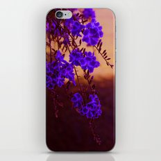 Chase away the blues iPhone & iPod Skin