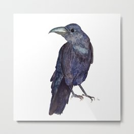 Raven is watching Metal Print