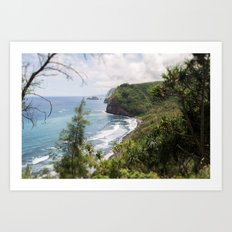 Pololu valley Art Print