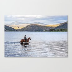 Horse at Airds Bay Loch Etive Canvas Print