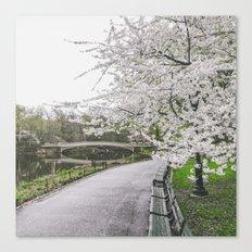 New York City Sakura Canvas Print