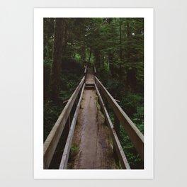Rainforest Bridge Art Print