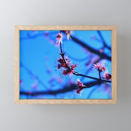 Feathery Red Blossoms Framed Mini Art Print