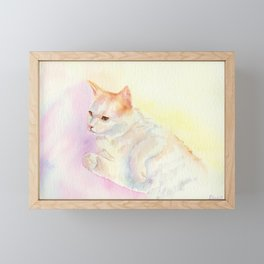 Playful Cat III Framed Mini Art Print
