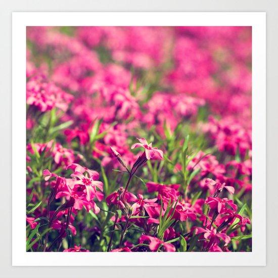 Through the Pink Art Print