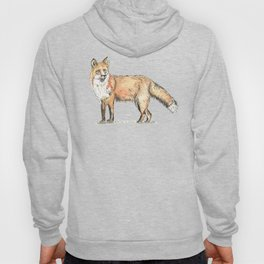Fox watercolour and ink Hoody