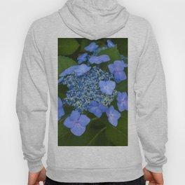 Floral Print 065 Hoody