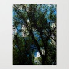 Tortuosa Canvas Print