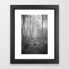 Black cat alone in the forest Framed Art Print