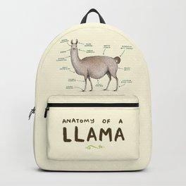 Anatomy of a Llama Backpack