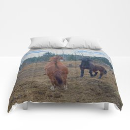 The Challenge - Ranch Horses Fighting Comforters
