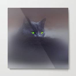 Black Cat with Green Eyes Metal Print