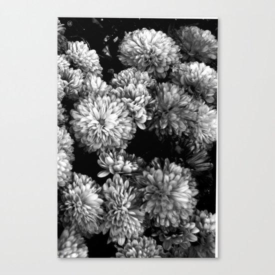 white gold Canvas Print