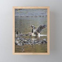 Taking Umbrage Framed Mini Art Print