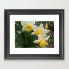 Butter Yellow Framed Art Print