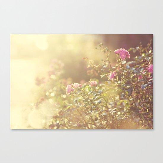 SUNLIGHT GARDEN II Canvas Print