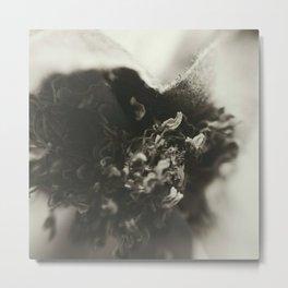 fiore/flower Metal Print