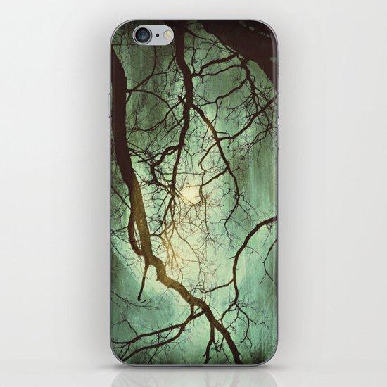 Earth's Moon iPhone & iPod Skin