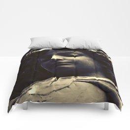 Gabriel Descending Comforters