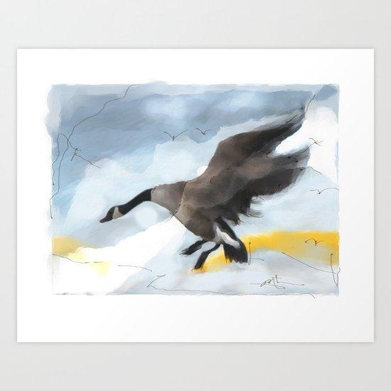 Canada Goose Landing...digital sketch Art Print