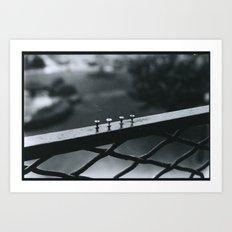 Push Pins Art Print