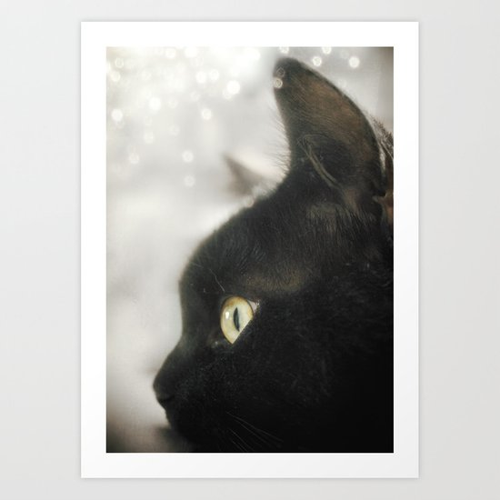 The Black Cat (Sammie) Art Print