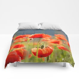 Red Poppies Flowers Comforters