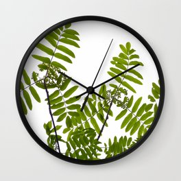 Green Rowan Leaves White Background #decor #society6 #buyart Wall Clock
