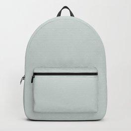Iceberg Green Backpack