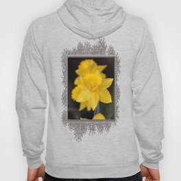 Trumpet Daffodil named Exception Hoody