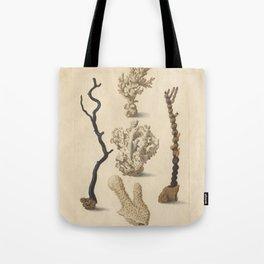 Naturalist Coral Tote Bag