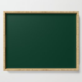 Ultra Deep Emerald Green Color - Lowest Price On Site Serving Tray