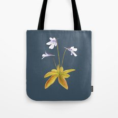 Butterwort - Pinguicula macroceras Tote Bag
