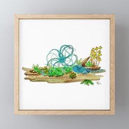 Air Plant Critter on Lichen log Framed Mini Art Print