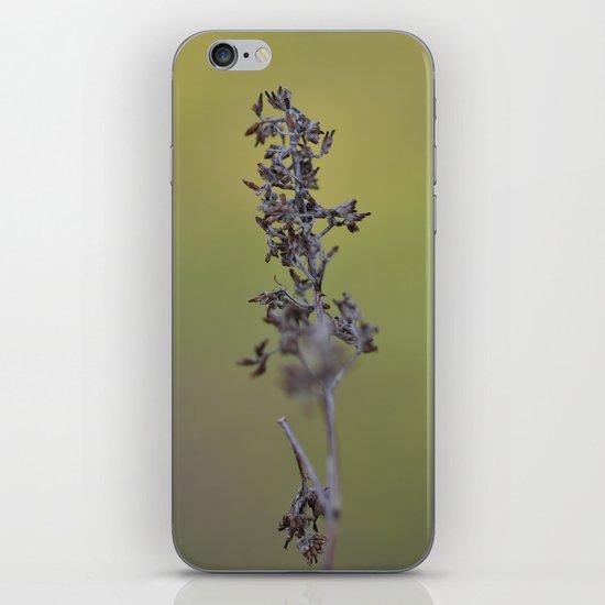 Pods iPhone & iPod Skin