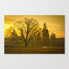 Beyond The Cemetary Canvas Print