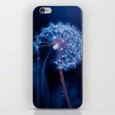 Light In The Sky iPhone & iPod Skin