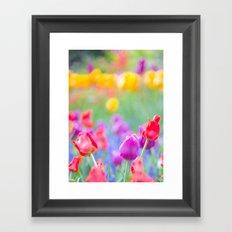 Soft Tulips Framed Art Print