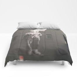 Einstein knows Comforters