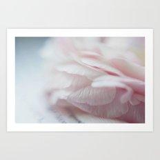 Macro Pale Pink Art Print