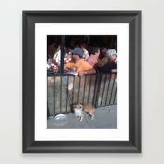 Feed Time Framed Art Print