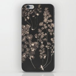 Black Maidenhair iPhone Skin
