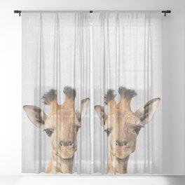 Baby Giraffe - Colorful Sheer Curtain