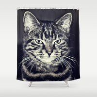 austin Shower Curtains featuring Austin by Rachel's Pet Portraits