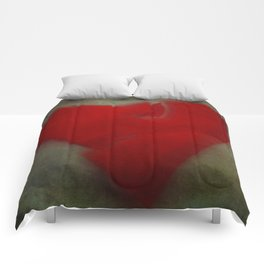 Who Says Romance is Dead? Comforters