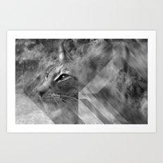Broken Lynx Art Print