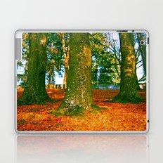 Autumn beauty Laptop & iPad Skin