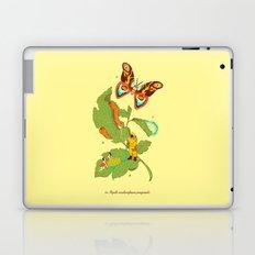 Papilio insulaeinfanum praegrandis Laptop & iPad Skin