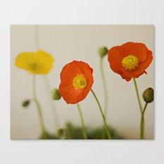 Orange Poppy Bloom Red Green Yellow Flower Canvas Print