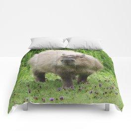 So cute capybara Comforters